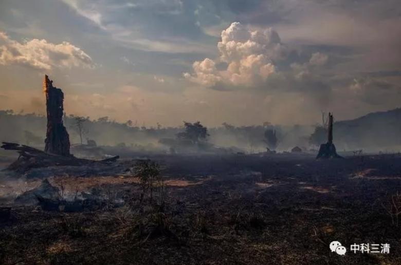 燃热的亚马逊 恶化的全球大气环境
