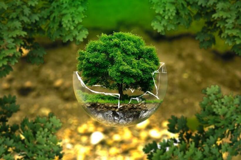图说政府工作报告中生态环保那些事